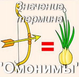 что такое Омонимы?