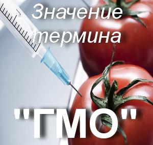 что значит ГМО?