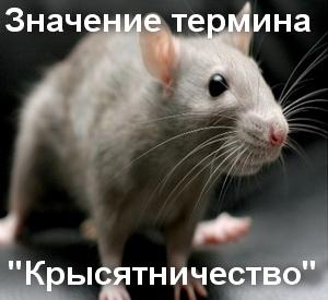 Крысятничать - что значит?