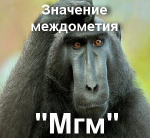 Мгм - что значит?